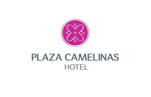 Logo Plaza Camelinas